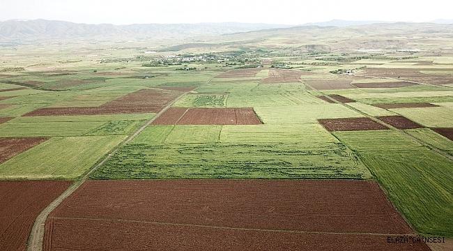 Elazığ'da arazi toplulaştırma çalışmaları sürüyor